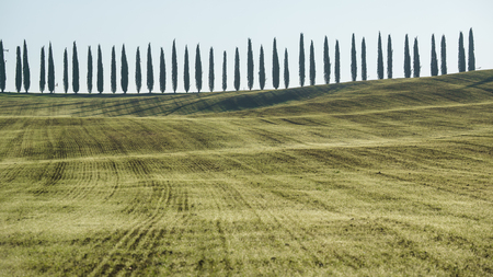 traditional Tuscany landscape