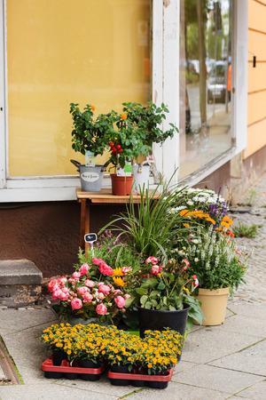 flower shop in summer