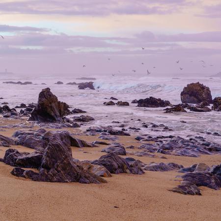 sunset on  beach of Atlantic ocean Stock Photo