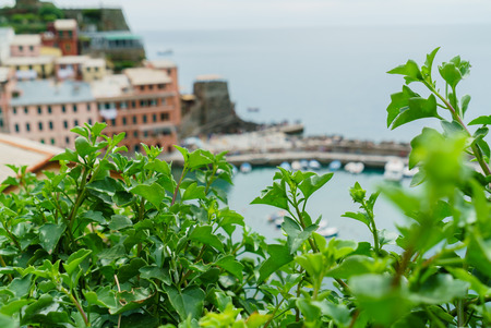 nice Ligurian Sea Stock Photo