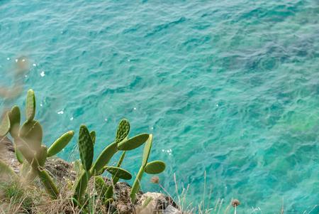 nice Ligurian Sea Stok Fotoğraf