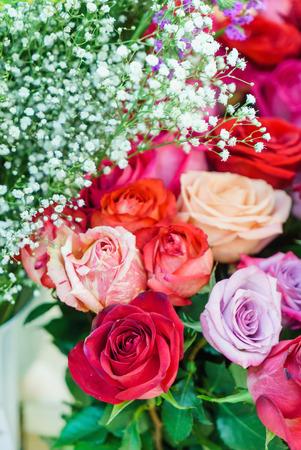 fresh roses closeup
