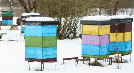 지붕에 snowdrift와 다채로운 벌집
