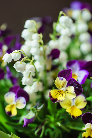 spring bouquet in the vase 版權商用圖片