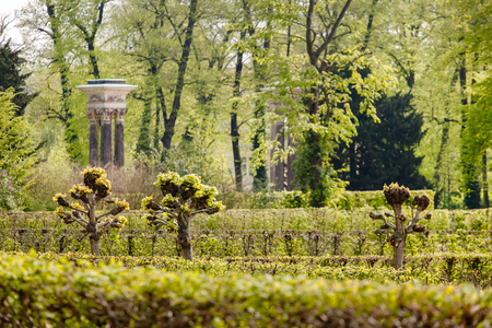 spring garden in France