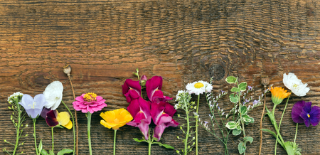 summer flowers on wooden background