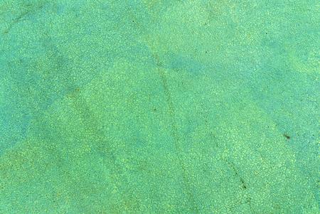 青い背景 写真素材