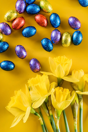 yellow narcissus and chocolate eggs