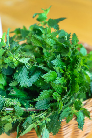 nettle in the basket Stock Photo