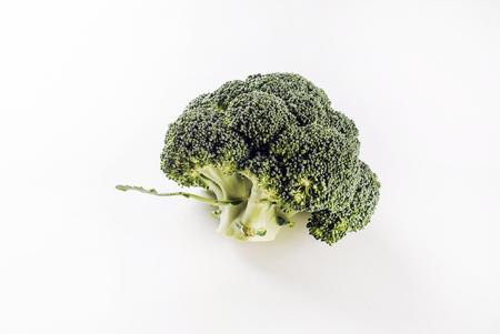 fresh broccoli on white