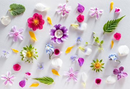 nice spring flowers