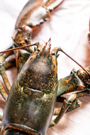 raw lobster on table Stock Photo