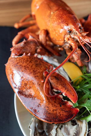 cooked lobster closeup