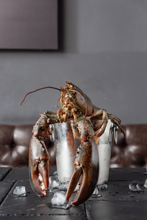 Raw lobster on ice