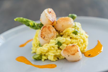 risotto with scallops Standard-Bild
