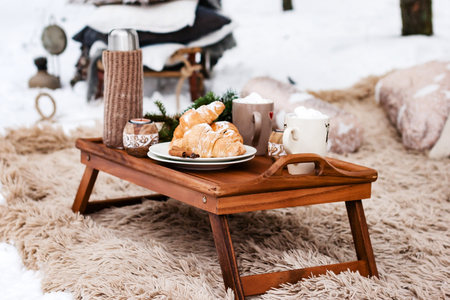 winter picnic in the forest