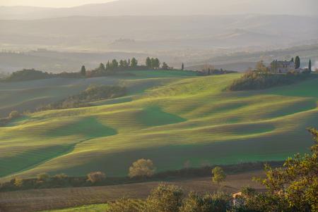 beautiful Tuscany landscape Standard-Bild - 115016532