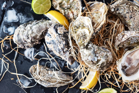 Open oysters ready for consuming, country-style