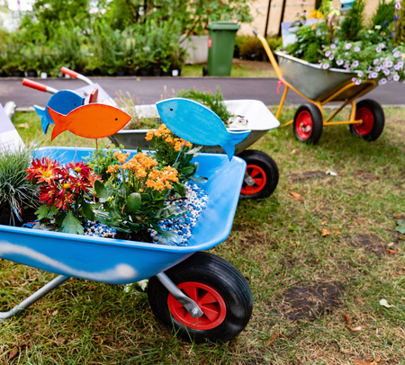 Wheelbarrow full of colorful flowers on a grass lawn Zdjęcie Seryjne