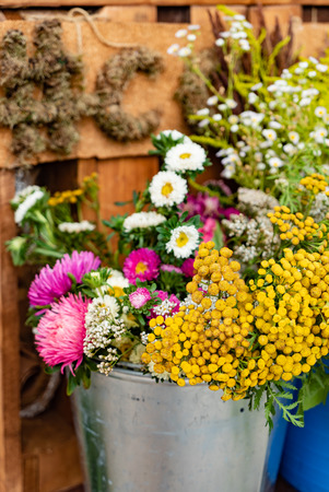 nice garden flowers in the metal bucket