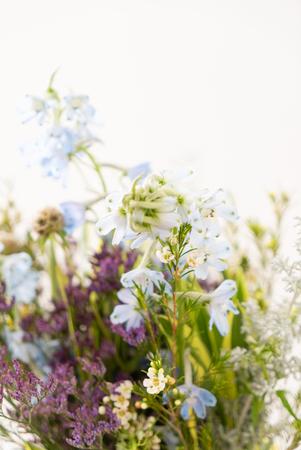 Nice spring flower bouquet on the white Stok Fotoğraf