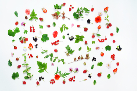 Summer concept, organic fruit and flowers on the white Stock fotó
