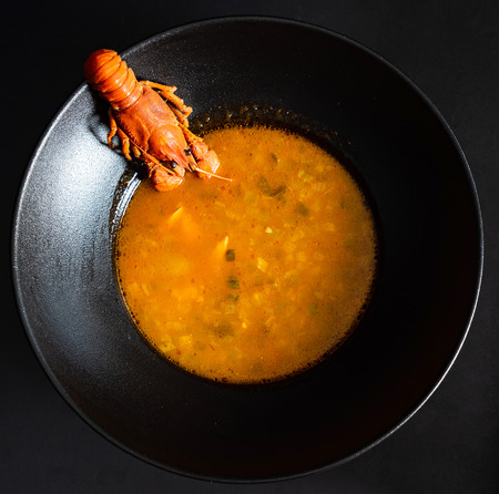 Traditional Russian soup Solyanka with fish and crayfish