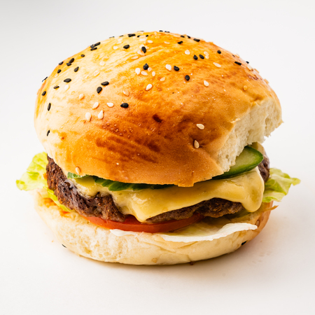 burger on the white background