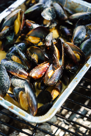 grilled mussels on the grill