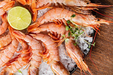 fresh shrimps on the ice