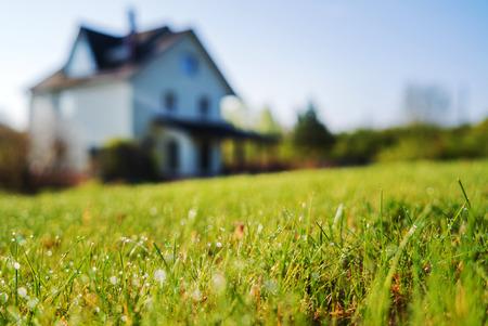 cottage huis en jong gazon