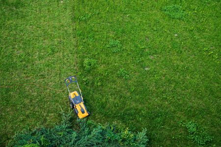 Working men working lawn care 스톡 콘텐츠