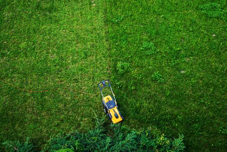 Working men working lawn care Archivio Fotografico