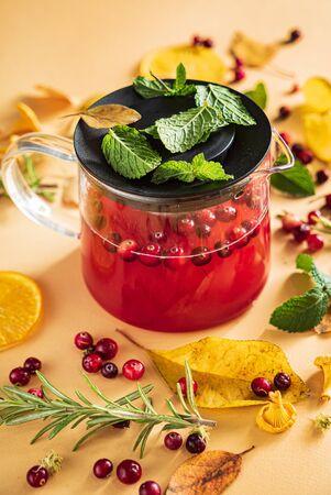 cranberry tea with mint and orange Reklamní fotografie - 131239620