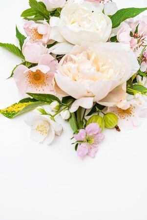 Flores de verano en el blanco