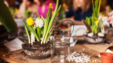 Gardener planting spring flower 版權商用圖片 - 135581530