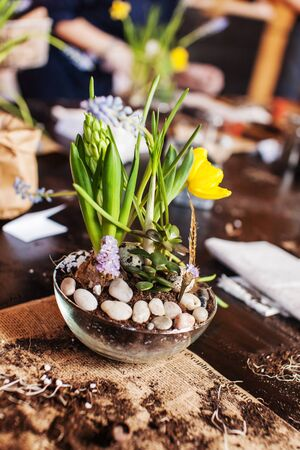 Gardener planting spring flower 版權商用圖片