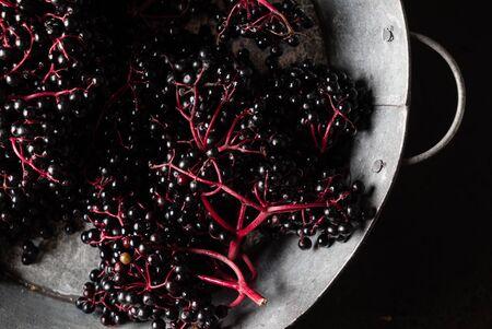 fresh elderberries