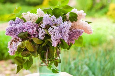 lilac flowers in the vase