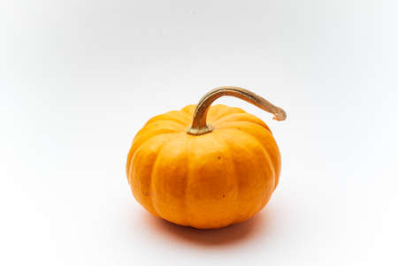 small decorative pumpkins on the white background Stock Photo