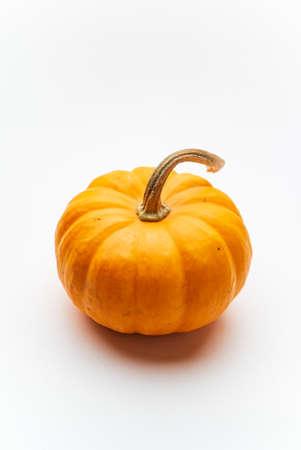 small decorative pumpkins on the white background Foto de archivo