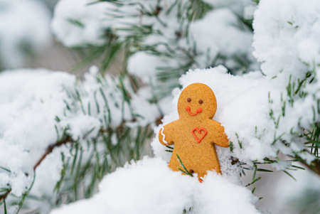 happy gingerbread man on the branch