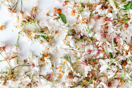 dried apple and cherry flowers