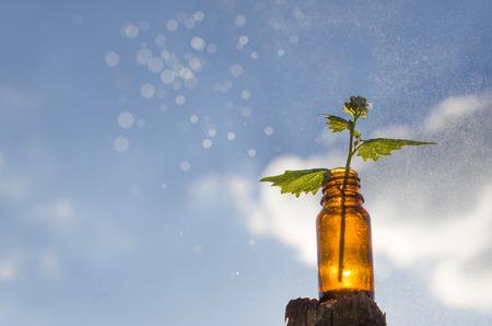 Natural remedies - medicines Banque d'images