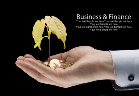 Money and plant with hand-finance new business Stock Photo