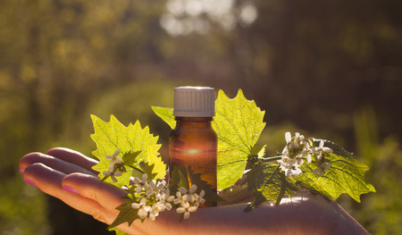Fresh herbs - Natural remedies  Essential Oil with Medicinal Herbs and Flowers