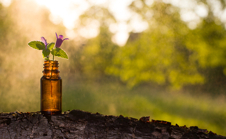 Natural remedies, aromatherapy - bottle.