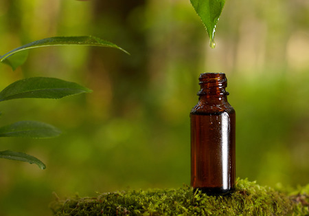 Dripping essential oil into a bottle from leaf. Natural medicines straight from nature. 스톡 콘텐츠 - 103605780