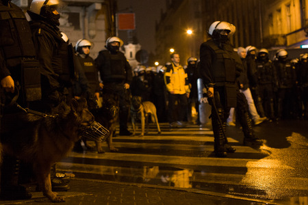 Police officers at street protest. Street riots , police dogs - Poland. Stok Fotoğraf