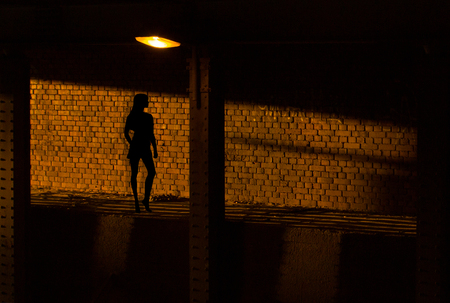 The shadow of a prostitute on the brick wall. Girl is waiting for the client at night, under the lamp. Banque d'images